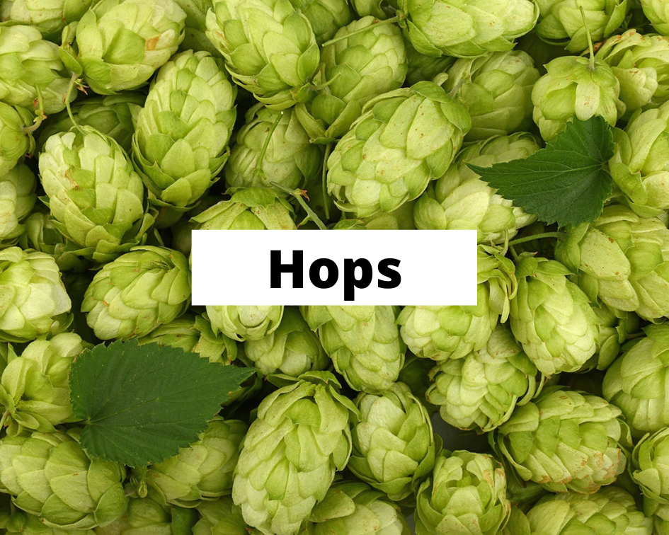hops-category